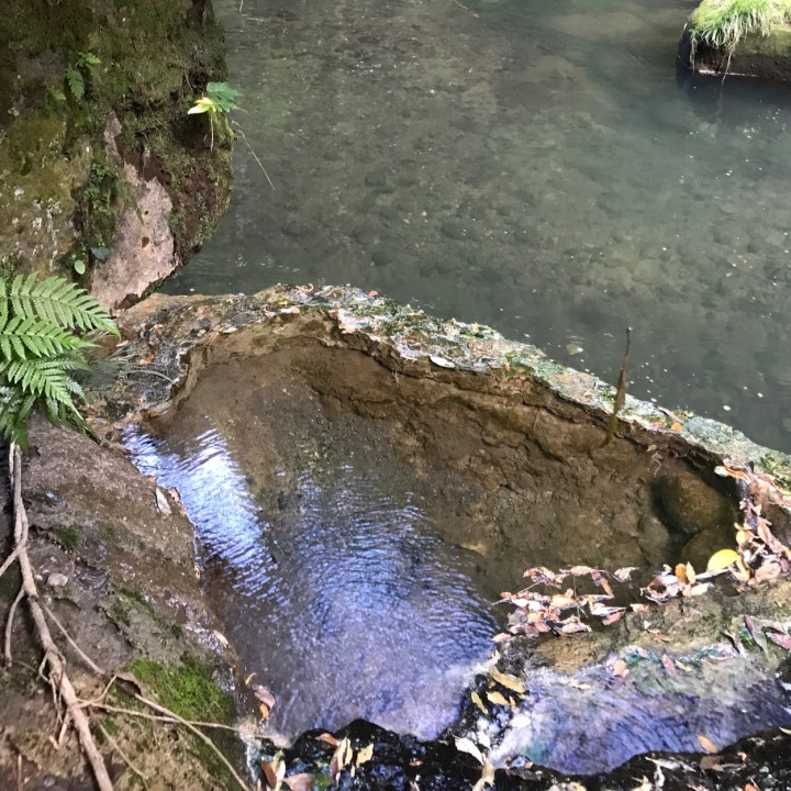 Chikurin Hot Spring 竹林の湯