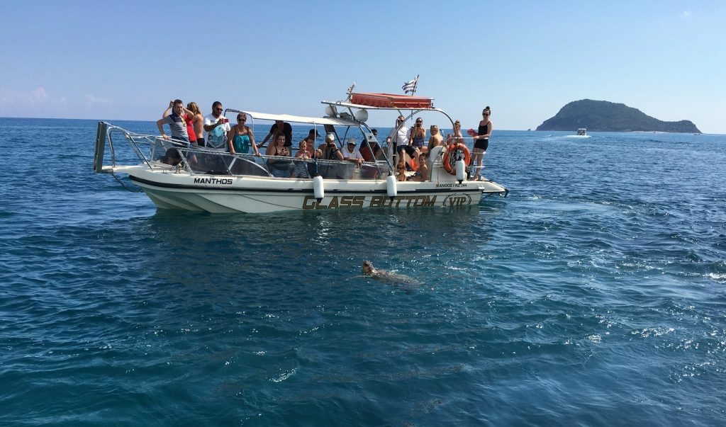 Things to do Zante - Turtle Spotting Boat Tour