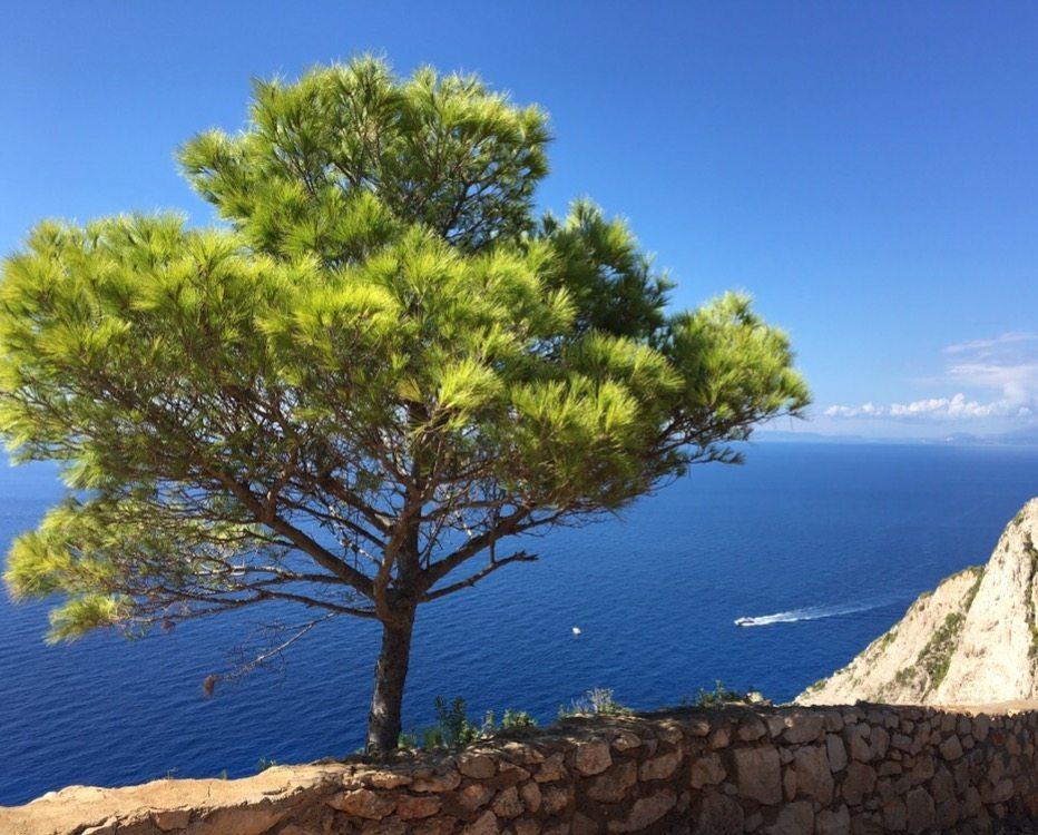 Things to do in Zante Zakynthos Greece