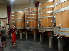 This room is 20ft below ground and has no lights, it relies on reflected solar in this organic, eco-friendly, biological winery