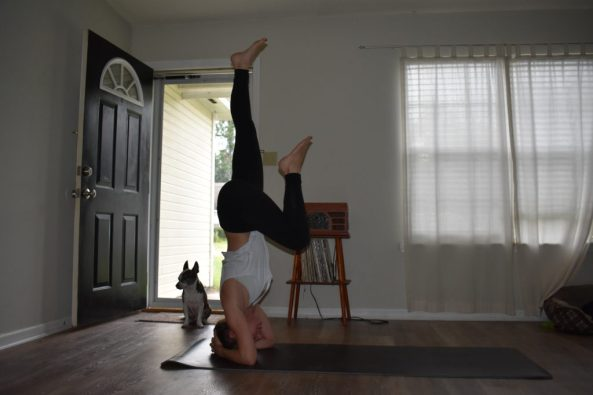 How to do a supported headstand yoga