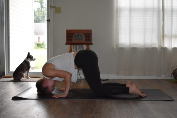 learn how to do a headstand in yoga