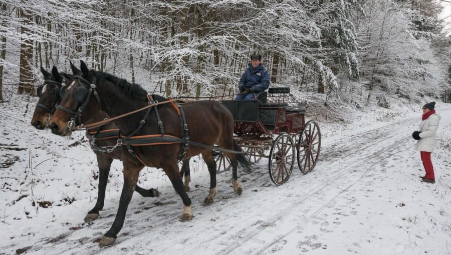 Kutsche in Febr. 2013