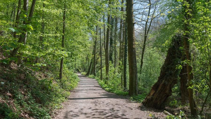 Wupperweg