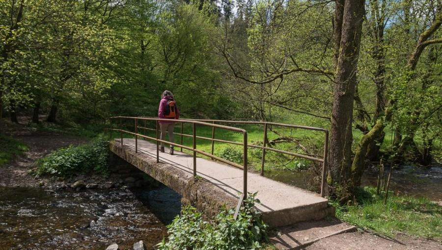Brücke über den Eifgenbach