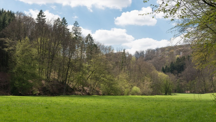 Rund um Dabringhausen-28