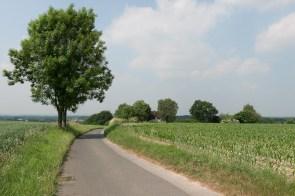 Über die Felder zurück