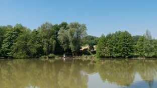 Teich am Rosthäuser Bach