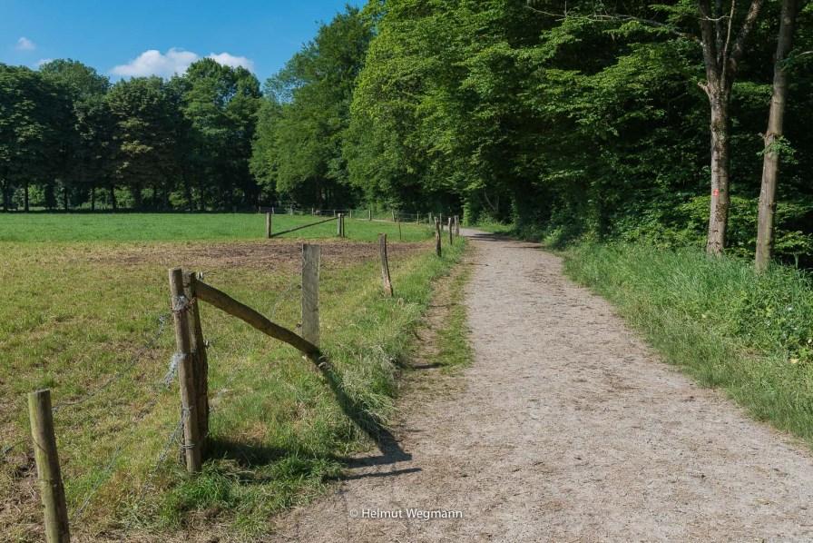 Wanderweg im Tal