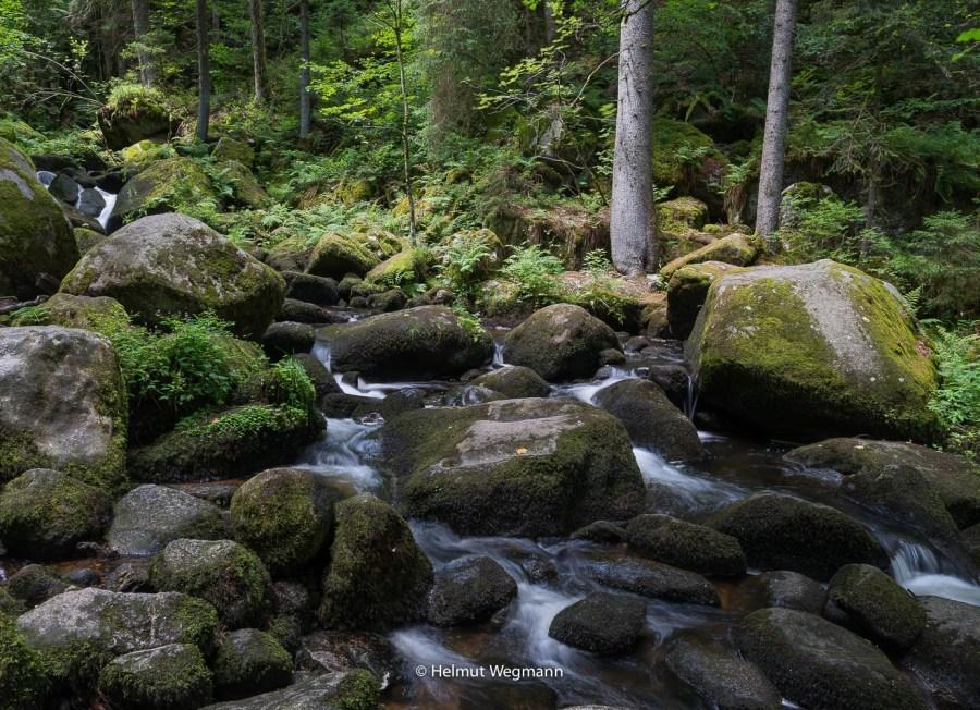 Wildbach in Triberg-1