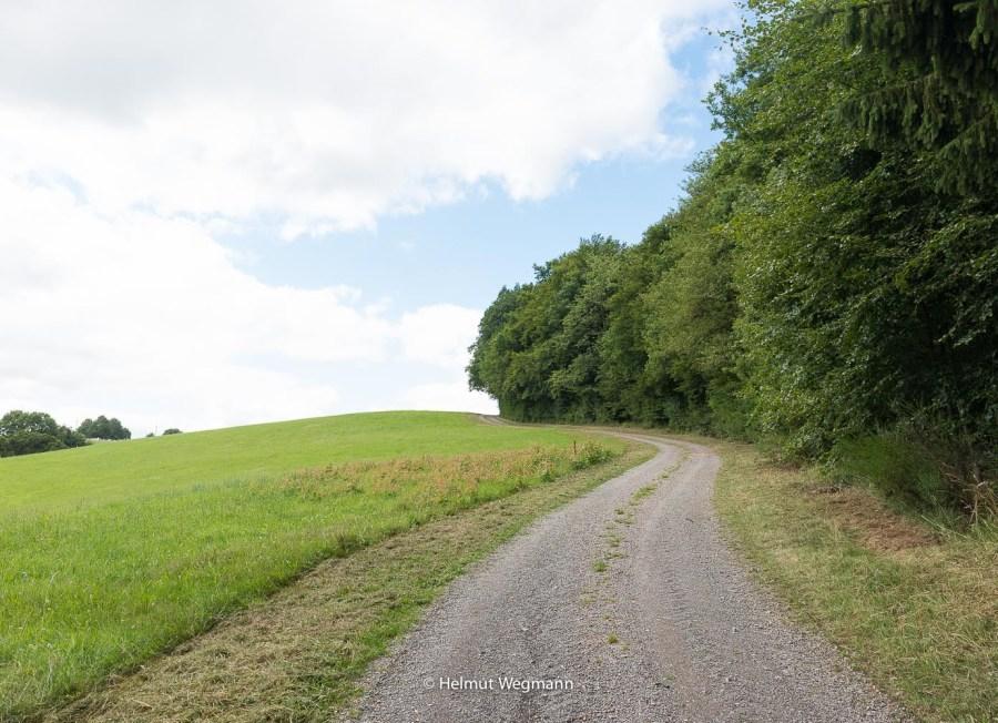 Typischer Feldweg