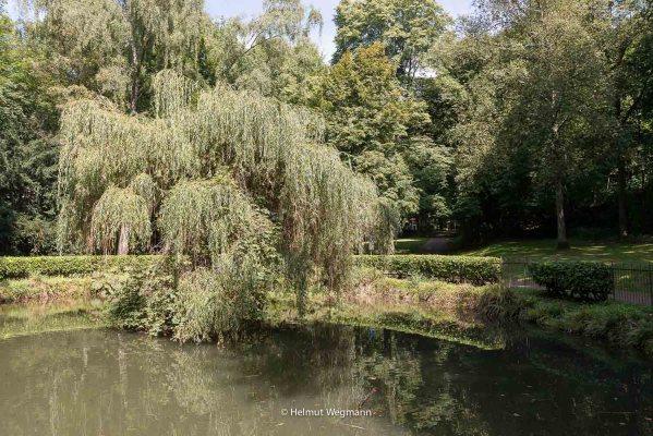 Teich im Gräfrather Park