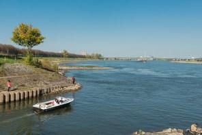 Mündung der Erft in den Rhein