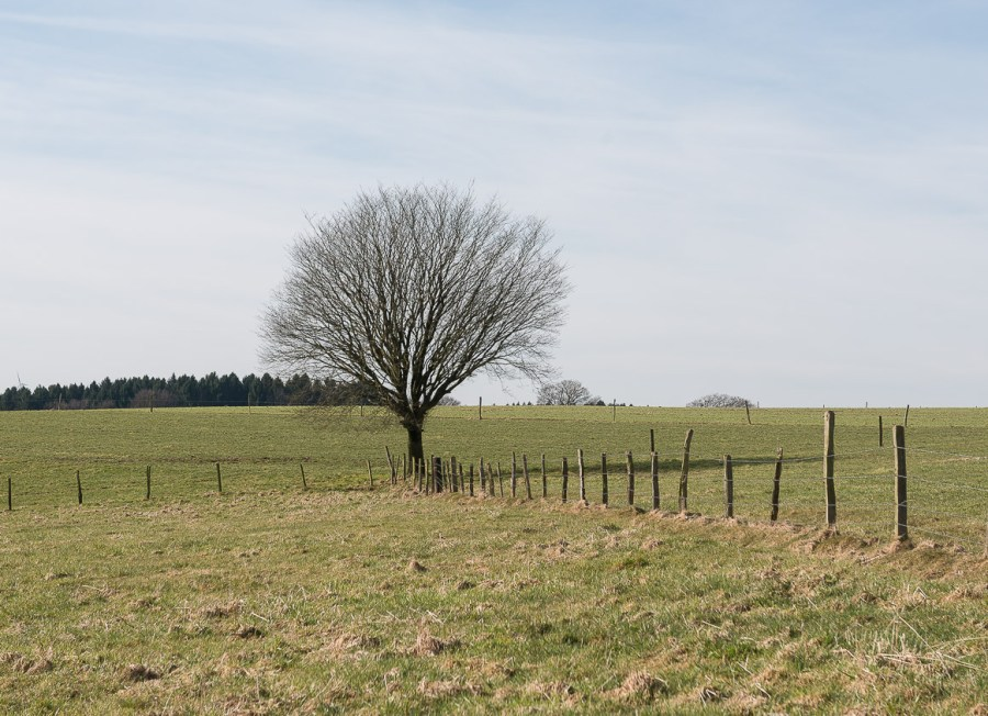 Kurz vor Altenhof