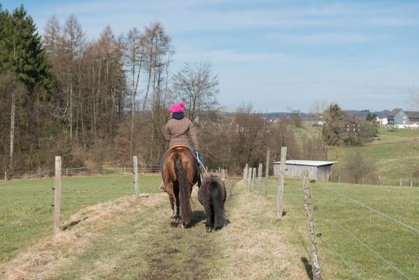 Frau mit Pferd und Ponny