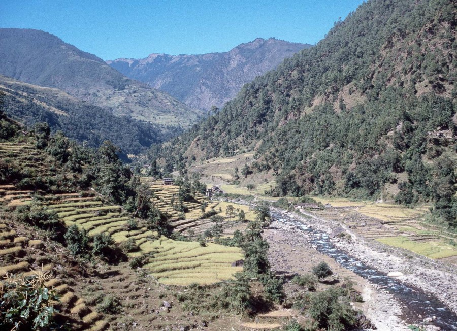 Nepal-02-02-028