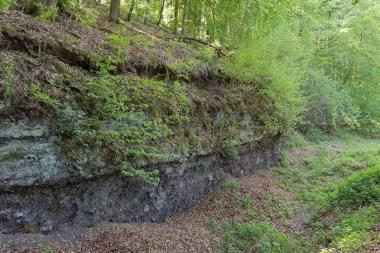 Gesteinsformation im Wald
