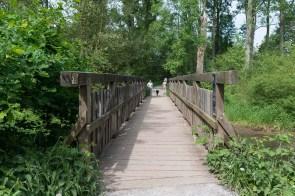 Holzbrücke über den Altrhein
