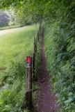 Der markierte Weg parallel zur Bahn