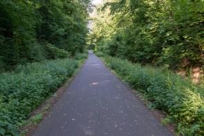 Typischer Weg auf der ehemaligen Bahntrasse