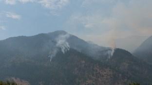 Waldbrand am TCD 1