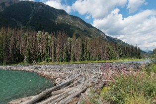 Duffey Lake in Kanada