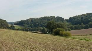 Typische Landschaft