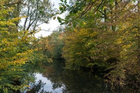Agger im Herbst