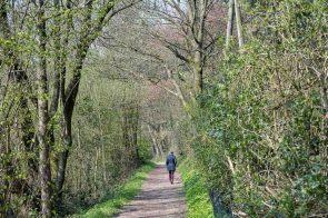 Wanderweg im Weltersbachtal