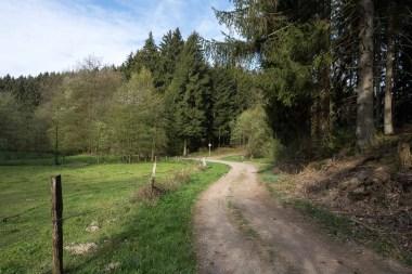 Wanderweg im Wipperfelder BAchtal