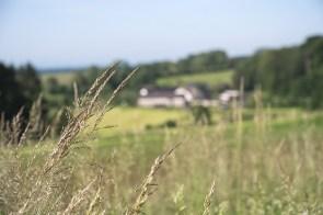 Blick auf Obermiebach