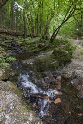 Mündung des Kluckbaches in die Rur