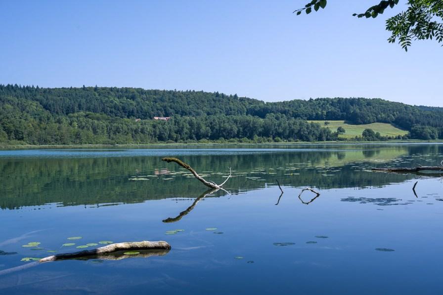 Zwischen den Bäumen ergab sich ein Blick auf den See