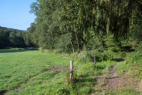 Am Anfang der Strecke im Naafbachtal