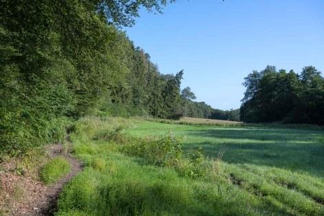Auf dem Rückweg im Naafbachtal