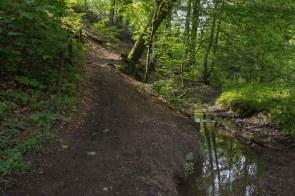 Waldweg mit Wersbach