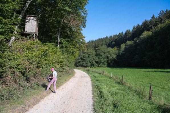 Hochsitz im Armutsbachtal