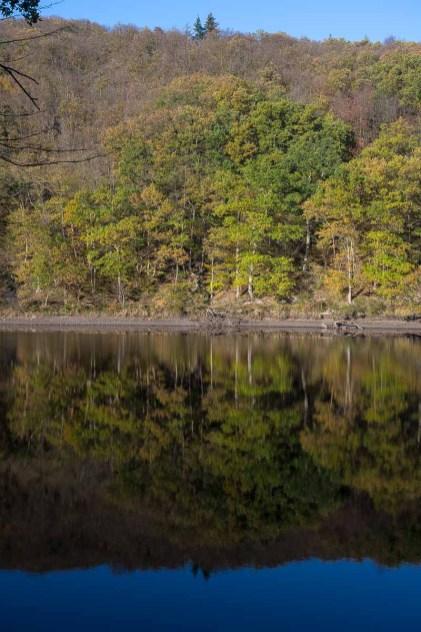 Spiegelungen am See