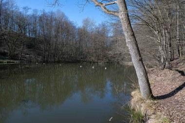 Teich des hiesigen Angelsportvereins