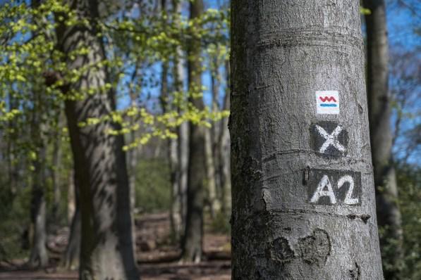 Kennzeichnung der Wanderstrecke