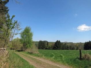 und wieder offene Landschaft
