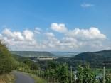 Blick in Richtung Rhein, rechts die Ehlinger Ley