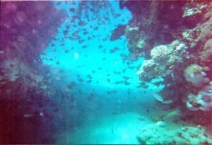Cave dive Dubrovnik, Croatia July 2002