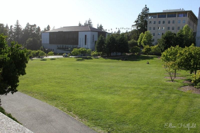 berkeley-green-space