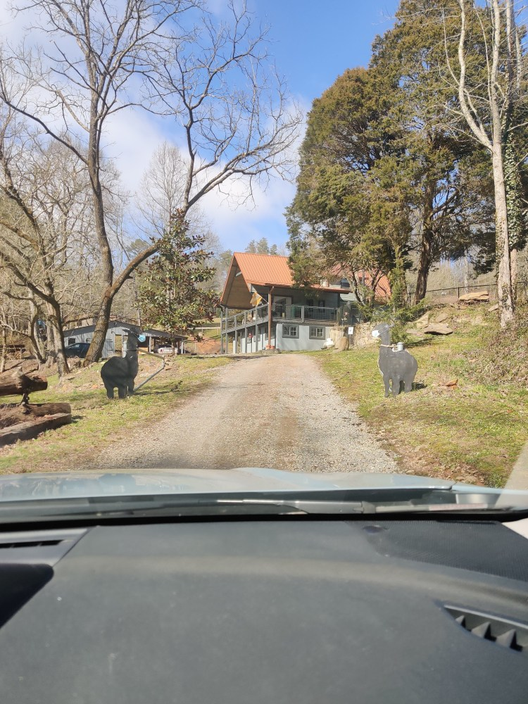 Exciting Places in the Blue Ridge Mountains Shaka Alpaca