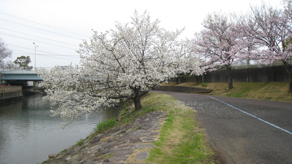 Shinsui River Park