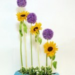 Alliums and Sunflowers Ikebana