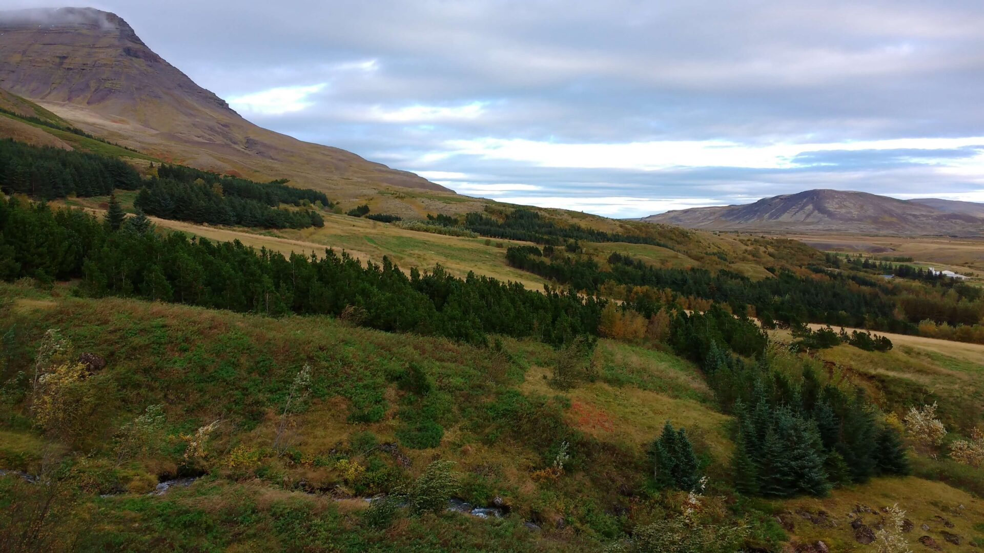 Mount Esja Hike – One of The Best Days Ever