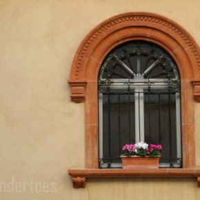 Windows of Assissi