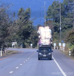 roadside-truckload2